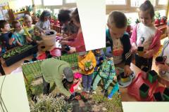Grupa-V-sadzi-kwiatki-w-sali-i-ogrodzie