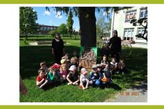17-Dzieci-z-grupy-III-na-tle-drzewa-z-nauczycielkami-w-strojach-mrowek
