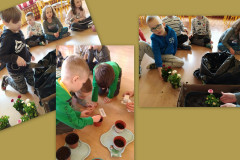 5-Dzieci-tworza-kompozycje-kwiatowe-ze-stokrotek-w-doniczkach-wysiewaja-ziola
