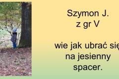 Slajd21