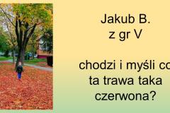 Slajd22
